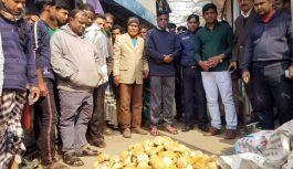 খেজুর রস ছাড়াই 'খেজুর গুড়' মানিকগঞ্জে